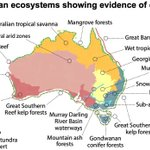 Australian scientists warn urgent action needed to save 19 'collapsing' ecosystems https://t.co/NaaGOgR3rb