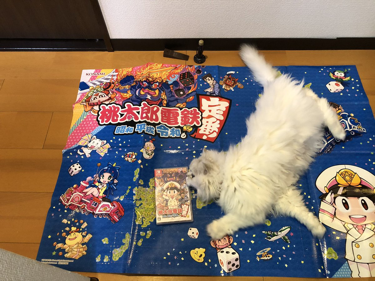 #桃太郎電鉄 が届いた❣️  #chinchillasilver #チンチラシルバー #persiancat #ペルシャ猫 #モフモフ #猫 #cat #nintendoswitch #任天堂スイッチ #ニンテンースイッチ #nintendo   #momotarodendetsu #momotetsu #桃鉄
