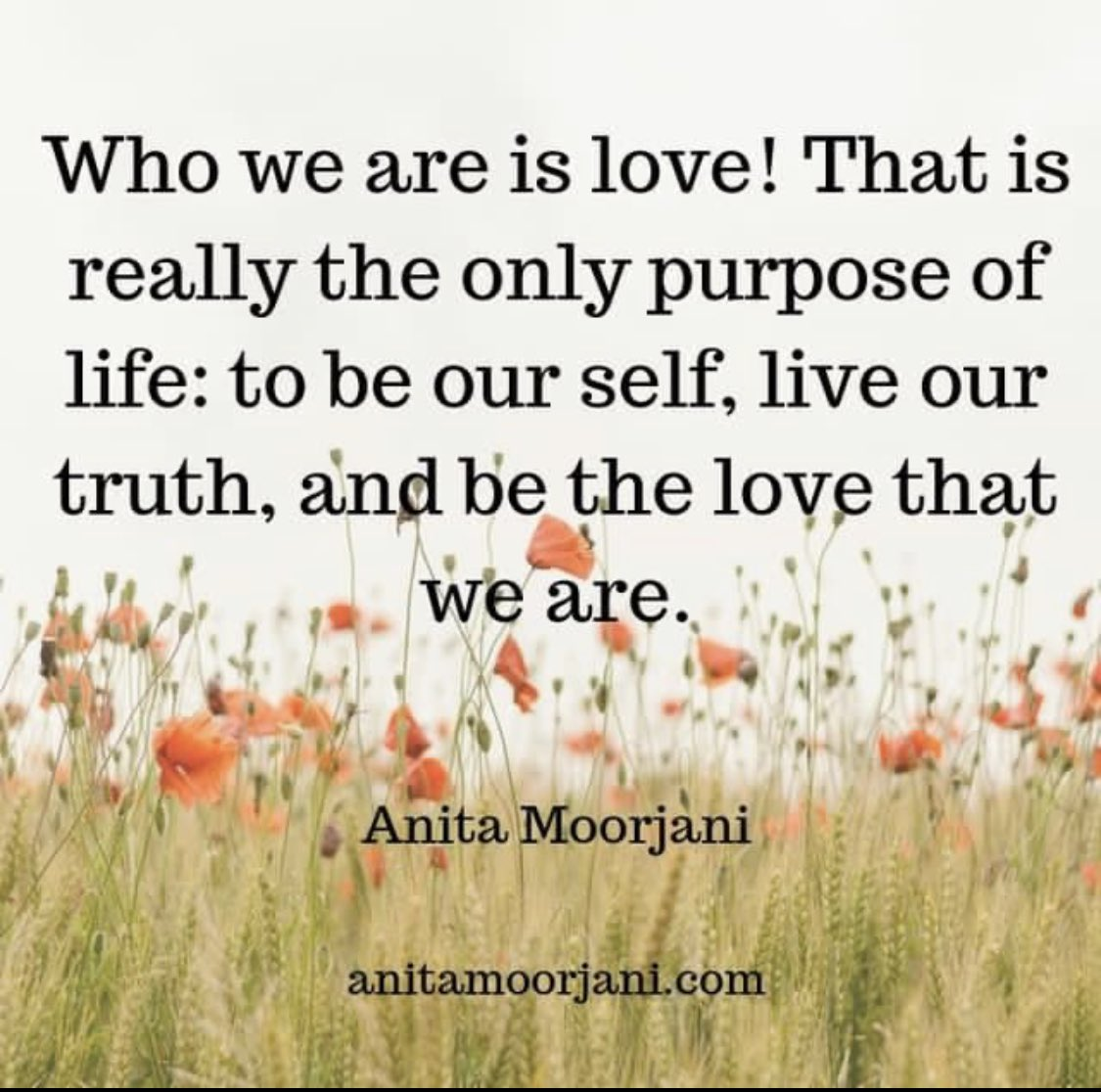 Love - theme of the day 🥰😊 ty @AnitaMoorjani ❤️🤗 #love #Truth  @MyMissionSucces