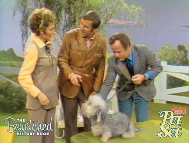 (3/3)  Paul cracked a couple jokes.  I highly recommend you get this DVD set, not just for Paul, but all the other guests too. #bewitched #paullynde #bettywhite #petset #bettywhitespetset #bewitchedhistorybook @BettyMWhite @PaulLyndebook