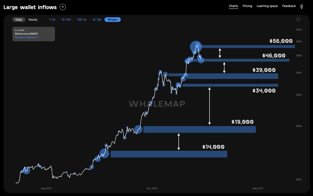 Whalemap macro edition. Prices at which whales have accumulated Bitcoin are shown as bubbles. These areas usually act as support and resistance 👇 46k and 39k are our key whale supports so far.