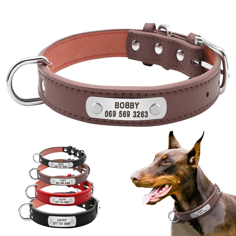 #cat #kitten Large Durable Personalized Dog Collar PU Leather Padded Pet ID Collars Customized for Small Medium Large Dogs Cat 4 Size