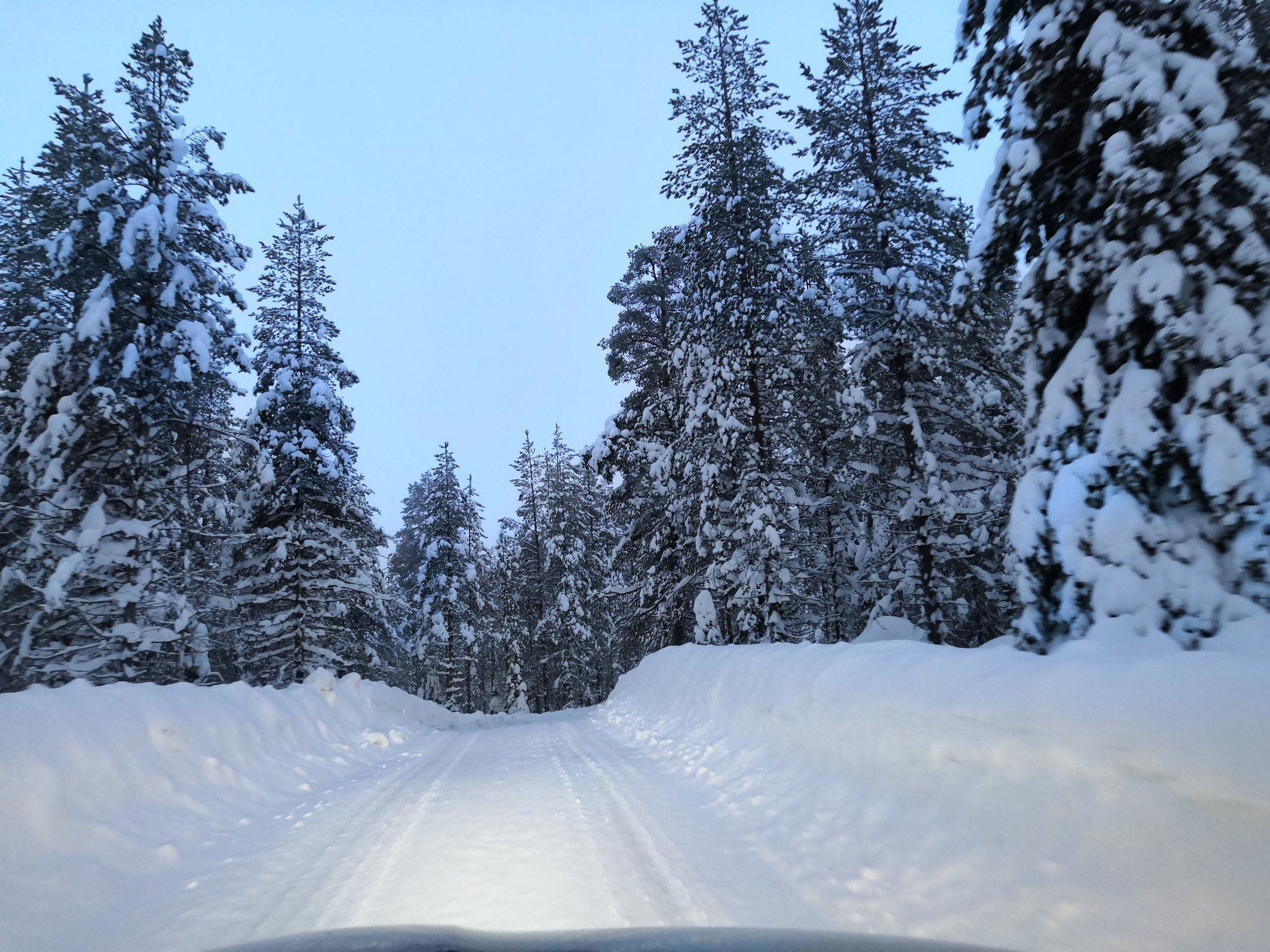 WRC: Arctic Rally Finland - Powered by CapitalBox [26-28 Febrero] - Página 3 EvJR-7kXAAETc0w?format=jpg&name=large