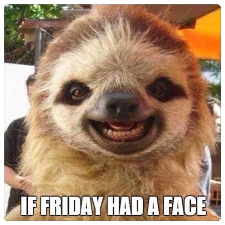 Happy Friday everyone!! #HappyFriday #itsfriday #fridayfeeling #fridaymorning #FridayVibes