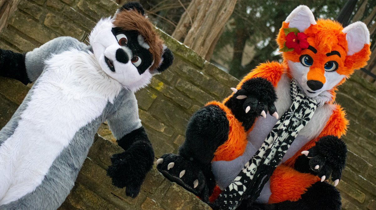 We're sassy, we're fluffy, and we're here to make you blushy! 🦝🦊 (Featuring @Blaze_The_Foxx ) #fursuitfriday #Raccoon #Fox #Snow  📷: @crossthewolf  ✂️: @FursuitsByLacy & @paciulofursuits