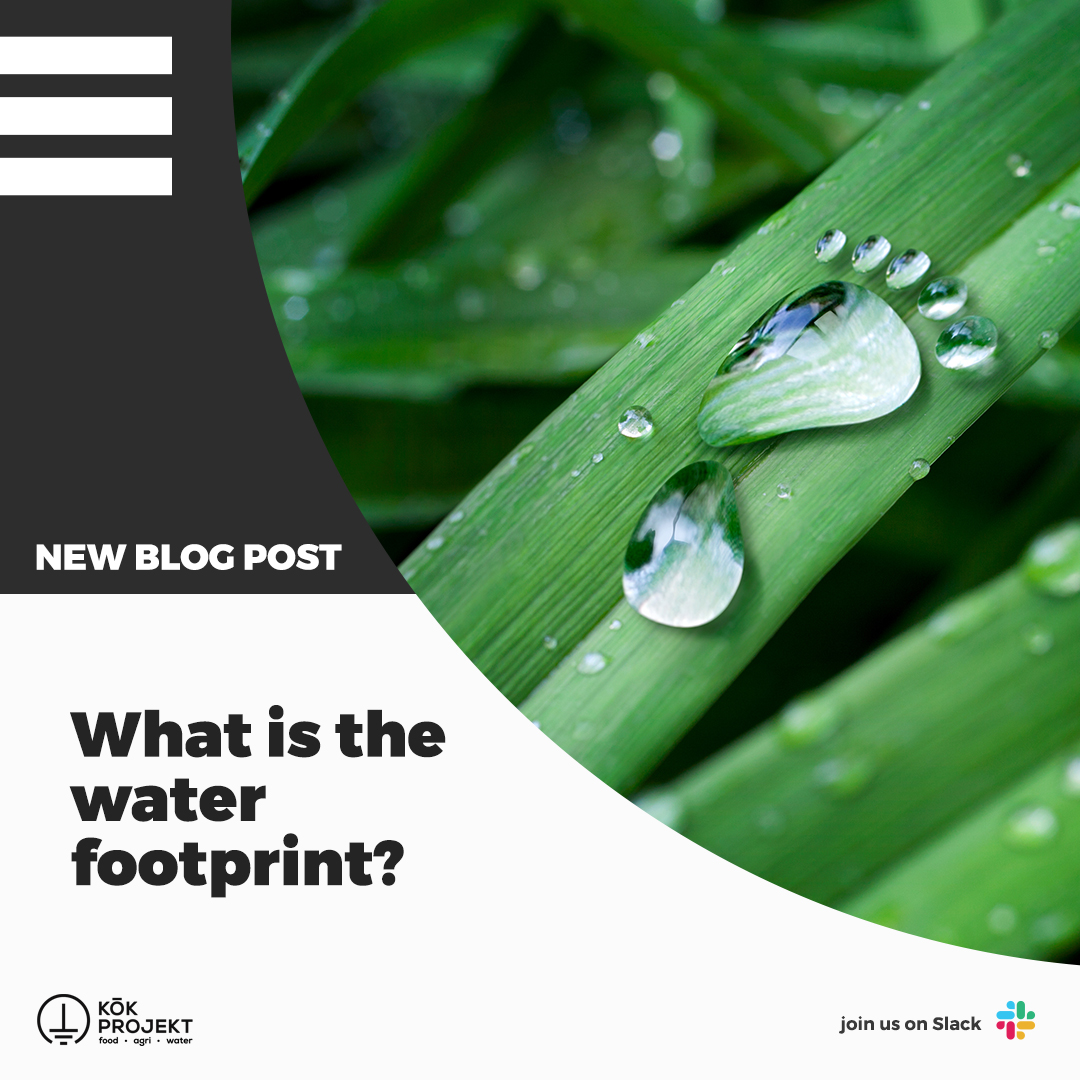 Check out our new blog post!  In our latest article, by our intern Muslahaddin Burak Arslan, What is the water footprint?  Read now, Water Footprint Part I