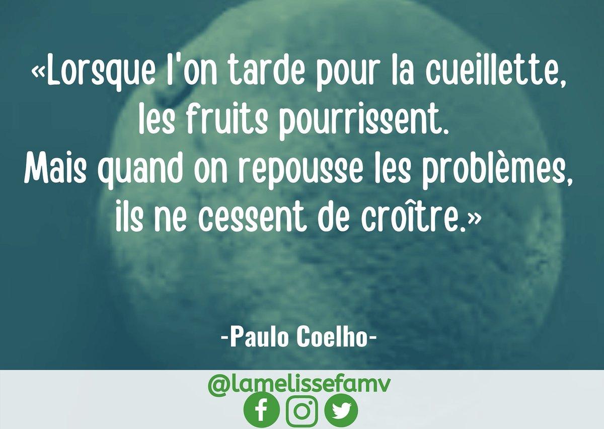 [ #MéliCitation ]  MÉLI-CITATION : Le temps arrange-t-il réellement les choses?  «Lorsque l'on tarde pour la cueillette, les fruits pourrissent. Mais quand on repousse les problèmes, ils ne cessent de croître.» dixit #PauloCoelho (...)  ✍🏾Vanessa ST-CYR   #lamelissefamv