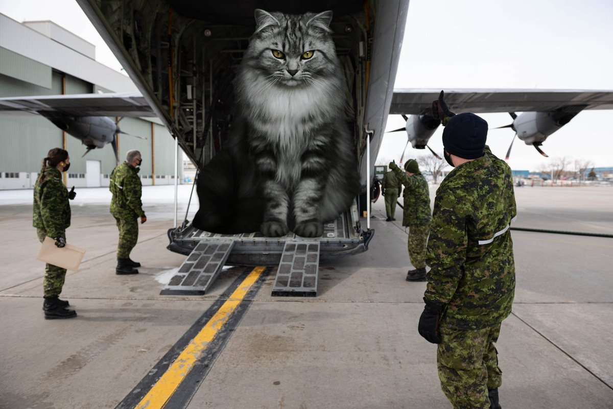 Replying to @giantcat9: CC-130 Hercules