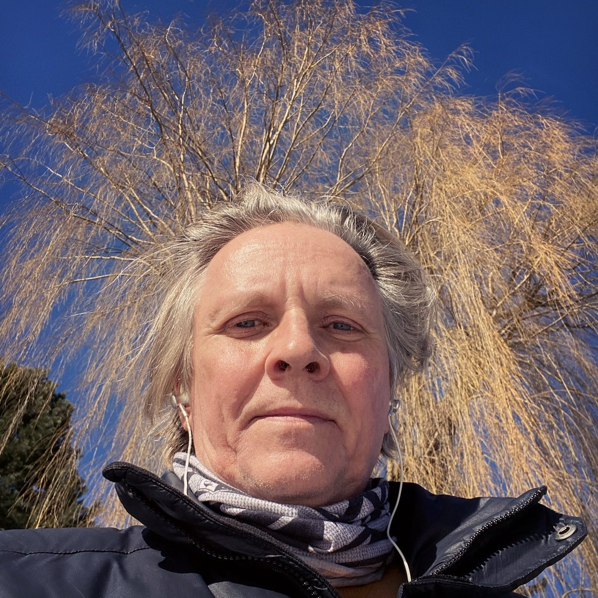 Under #bluesky and #willow