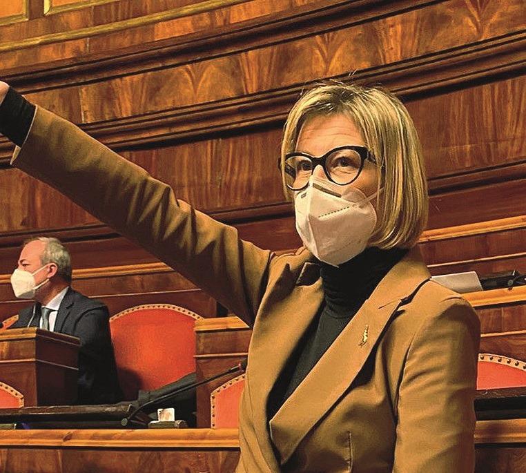 Sonia Fregolent