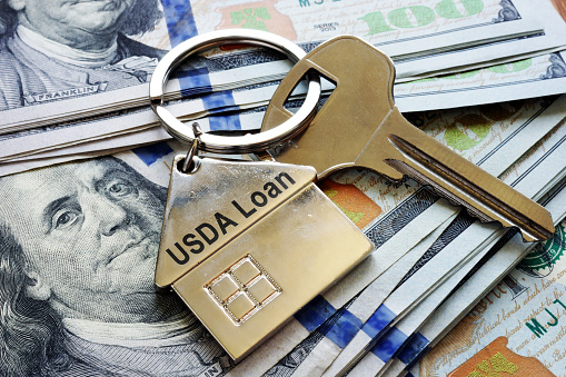 Let this guide help determine if you can qualify for a USDA #homeloan. #mortgages