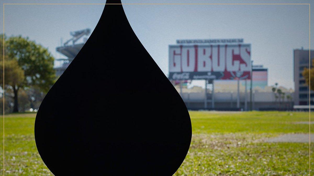 Enjoying the championship life. Happy Friday! #GoBucs #TampaBay #SuperBowlChamps #MinaretOnTheMove