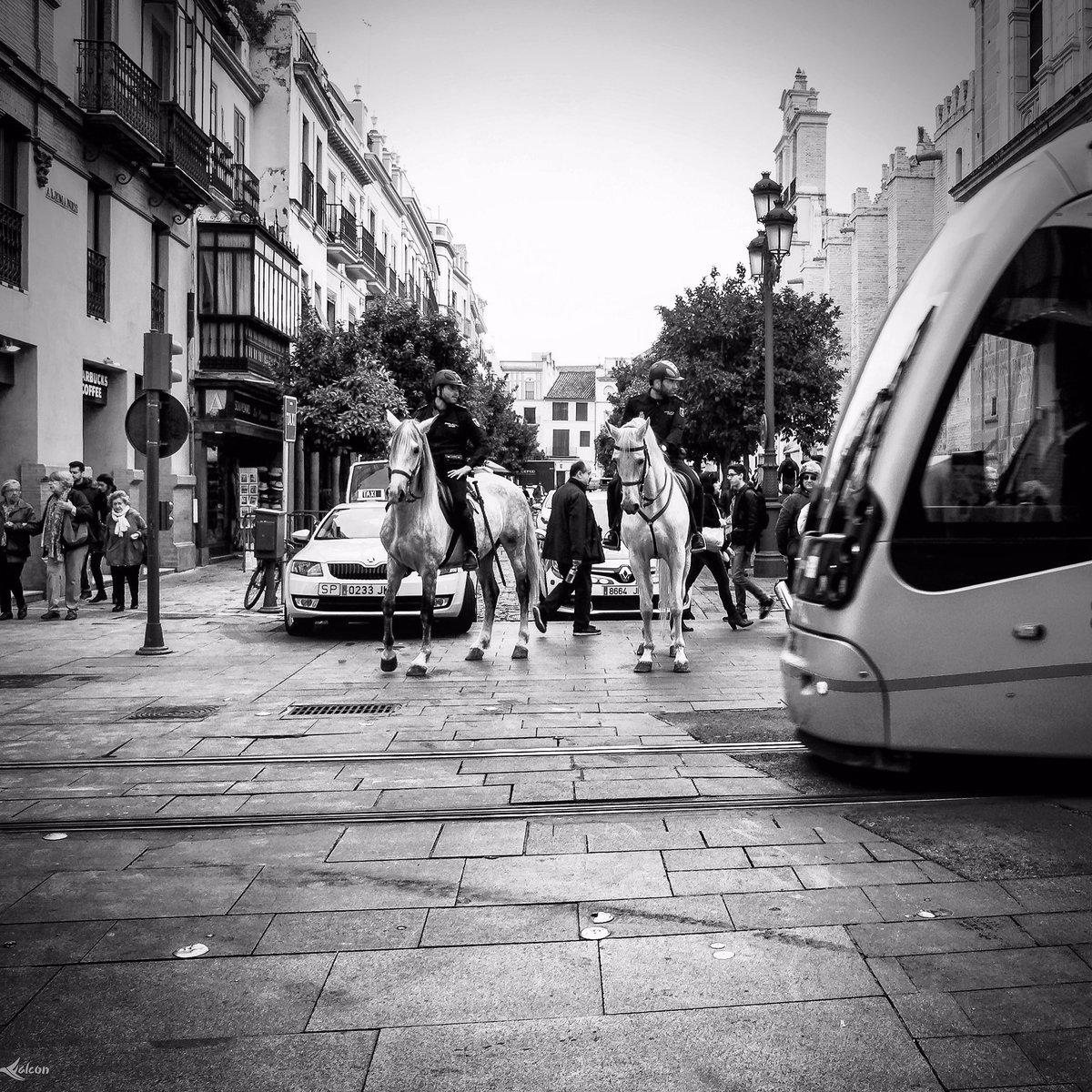 Soledades. #street #streetbw #streetphotography #streetphoto  #retrato #portrait #portraits #alfalcont #alfalcon  #confinados #sevilla #andalucia  #streetbw #blackwiter #blackandwhite #bn #blancoynegro #portrait #portraits #foto #fotocallejera #photo #calle #Nikon #soledades