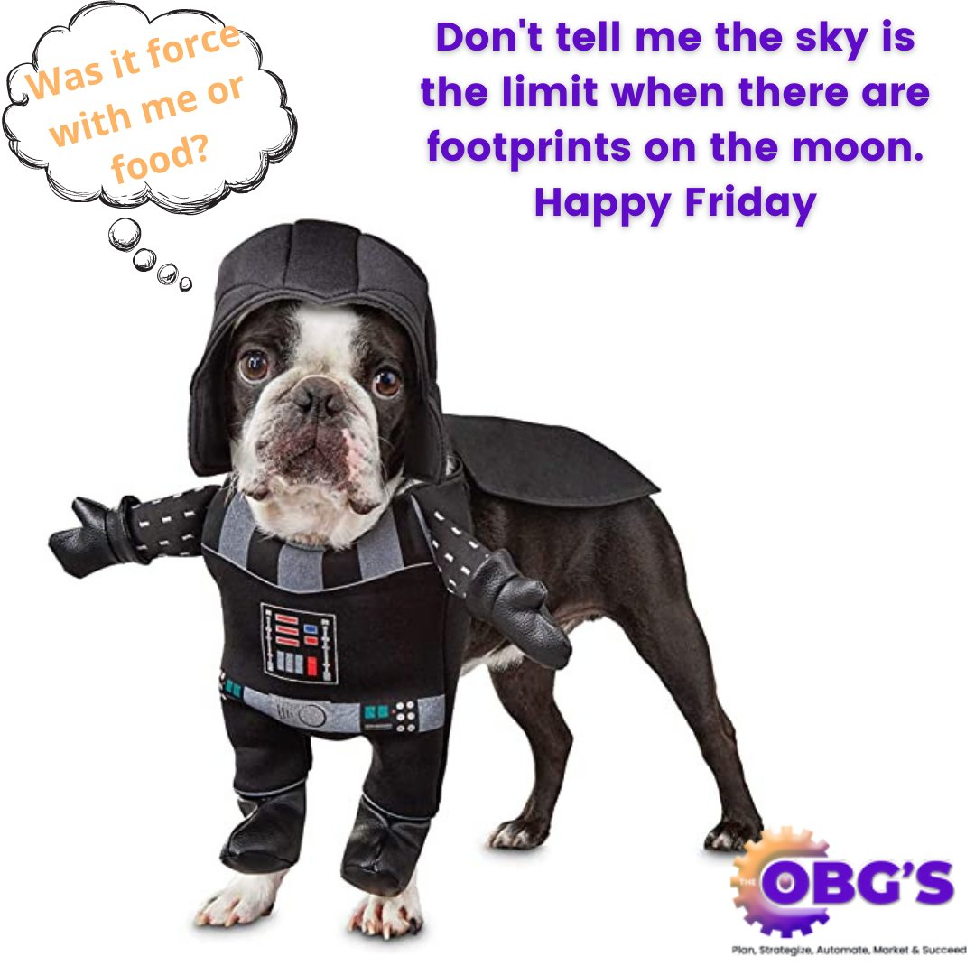 Have a wonderful weekend. And never stop reaching for the stars. #theobgs #life #happiness #business #success
