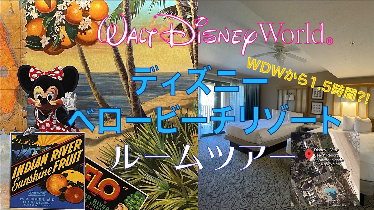 【WDW】ディズニー ベロー ビーチ リゾートTurtleHotelルームツアー!!! ディズニーワールドからちょっと離れたところにある、ベロービーチリゾート!誰も行かないようなので行ってきました。現場からは以上です。 #ディズニーワールド #ウォルトディズニーワールドリゾート