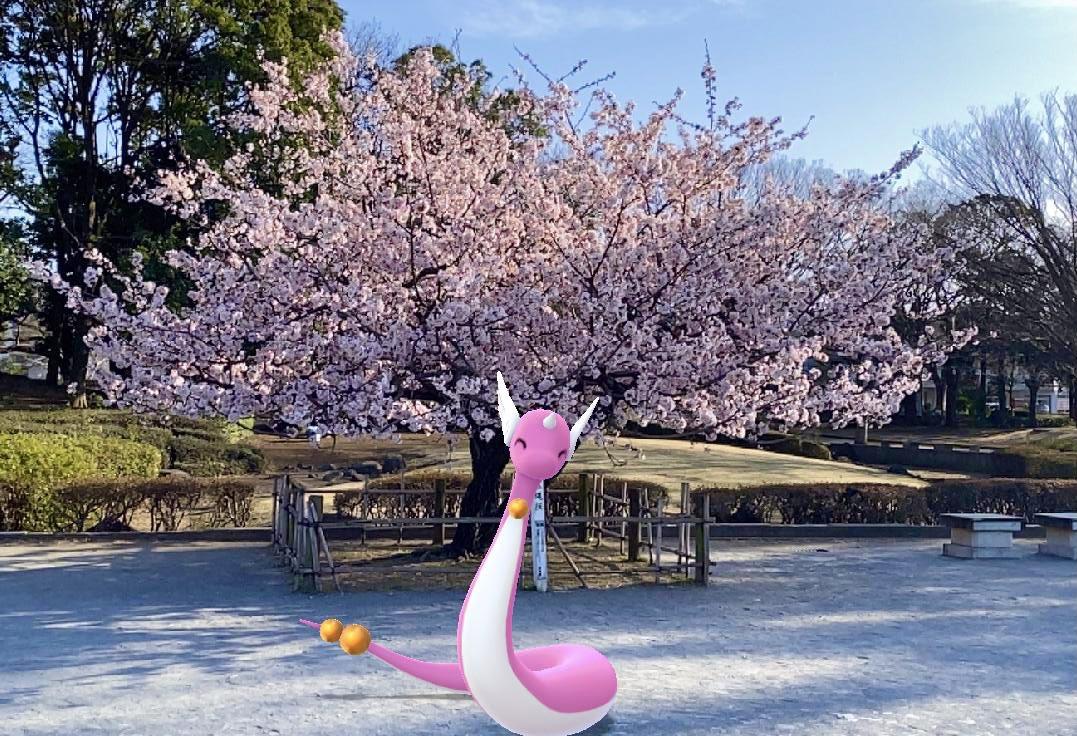 ゆーたそ@PokemonGOさんの投稿画像