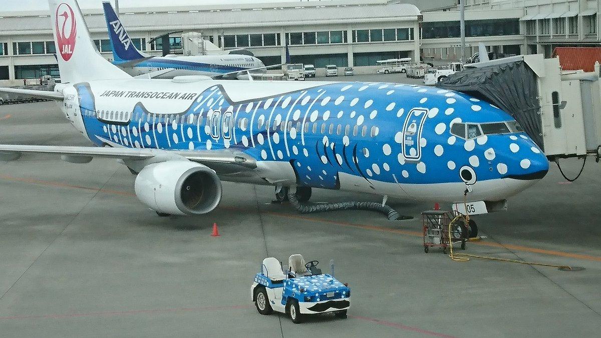 Sei-chan@飛行機旅行・海外旅行-ダイビングさんの投稿画像