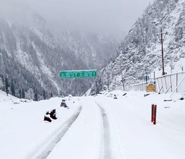 Fresh snowfall in Sonamarg