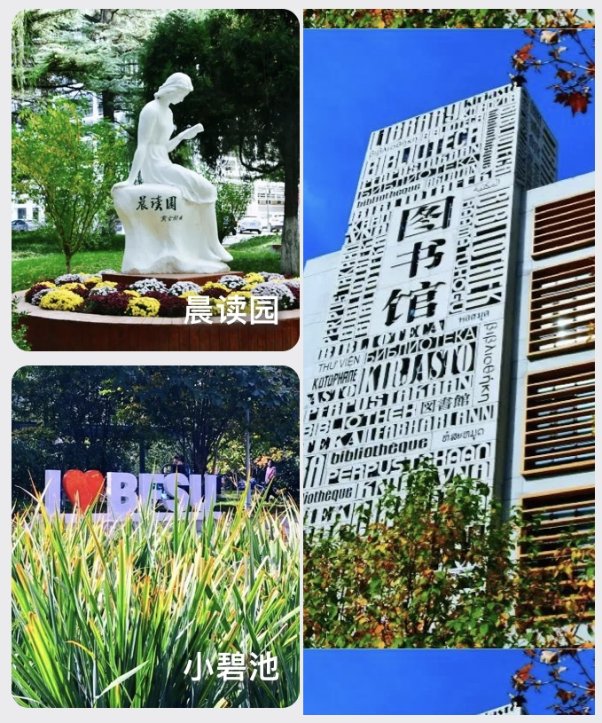 Students will soon back to the school after winter vacation. The bright spring and the cozy campus are ready to welcome you home~  #IBSBFSU #StudyinChina #studyabroad #China #Beijing #campus #newyear #2021 #北外 #북경외대 #유학 #베이징 #경제 #비지니스 #ビジネス #留学