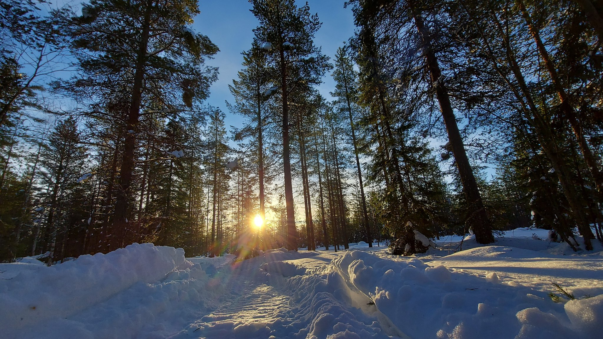 WRC: Arctic Rally Finland - Powered by CapitalBox [26-28 Febrero] - Página 4 EvNtfMbXUAInyH0?format=jpg&name=large