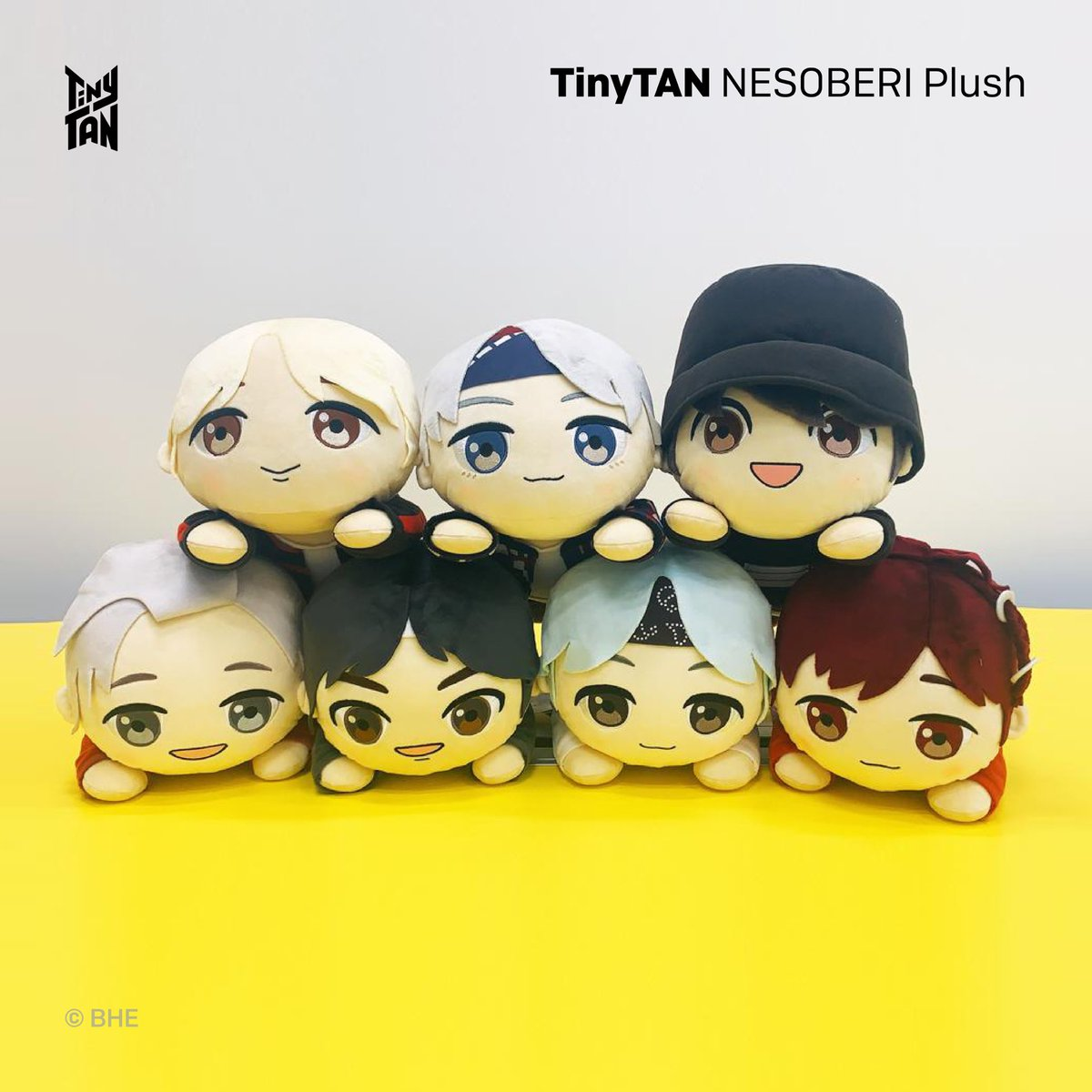 [February 2021] Newly Launched Licensed Products! TinyTAN @seganewsnavi NESOBERI Plush, Premium Blanket available in Japan
