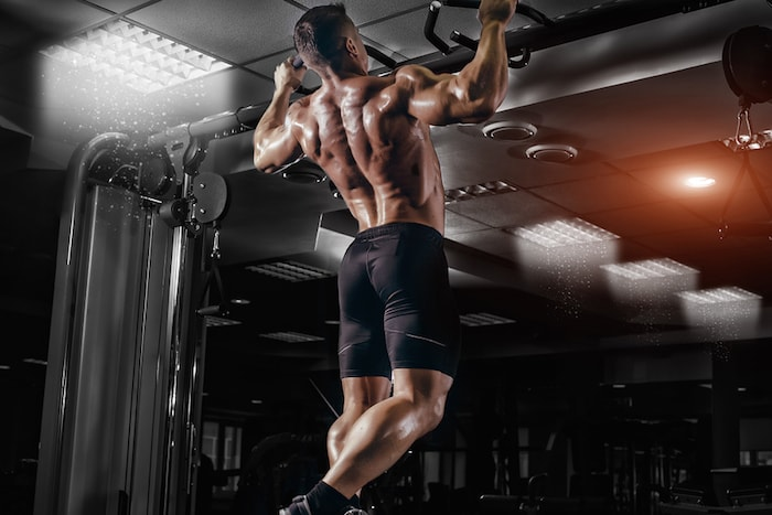 The Ultimate Back Workout To Add Size and Strength To Your Backhttps://wiselifelesson.com/back-workouts/  #training   #lifelessons