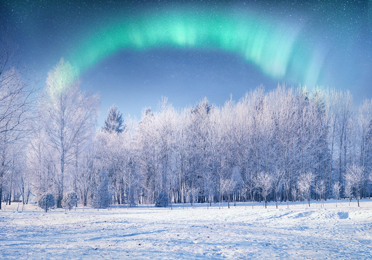 Happy Saturday everyone! I wish you all a wonderful and relaxing weekend! 😃✨🌳❄☕🥞 #aurora #trees #snow #winter