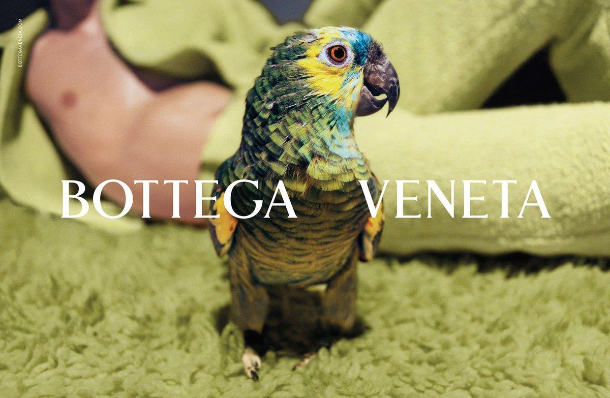 Bottega Veneta is continuing its vanishing act from social media, now in Asia too     #BottegaVeneta #luxury #luxuryfashion #fashion #socialmedia #vanishing #Asia #Kering @KeringGroup