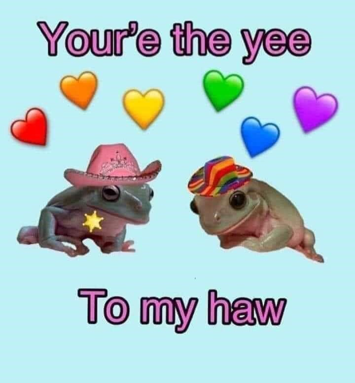 :( imma be single forever  BUT DATS OKAY. I ONLY NEED ME MYSELF AND I- AND MY BEST FRIEND- AND MY CAT- AND MY ENDLESS ATTRACTION TO PEOPLE I DONT KNOW AND PEOPLE WHO ARE 2-D #frog #yeehaw #amazing #cute #anime