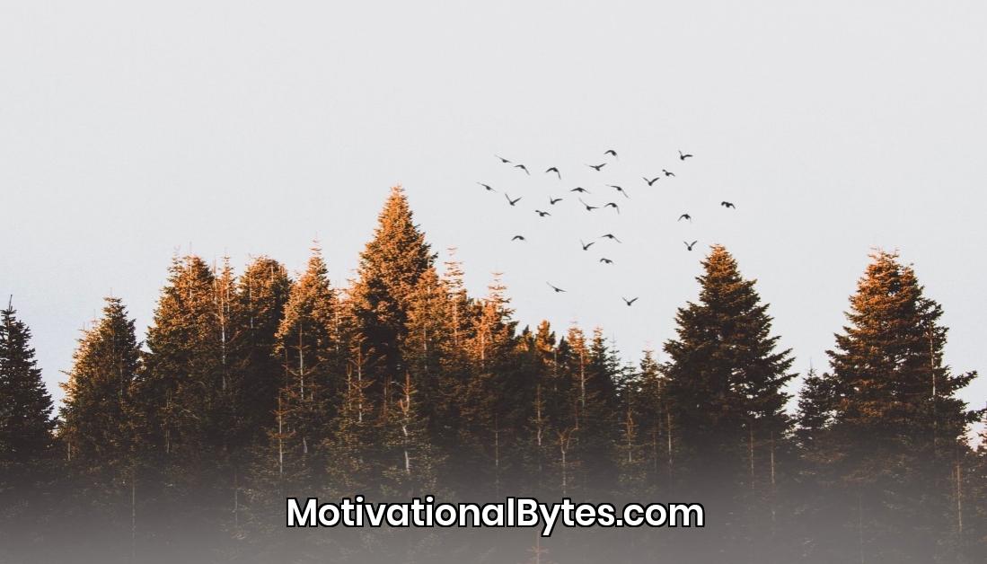 Follow @MotivationBytes for daily Inspiration #Quotes #Inspiration #Motivation #inspirational #Motivational #MotivationalBytes #MotivationBytes #InspirationalQuotes #MotivationalQuotes more at