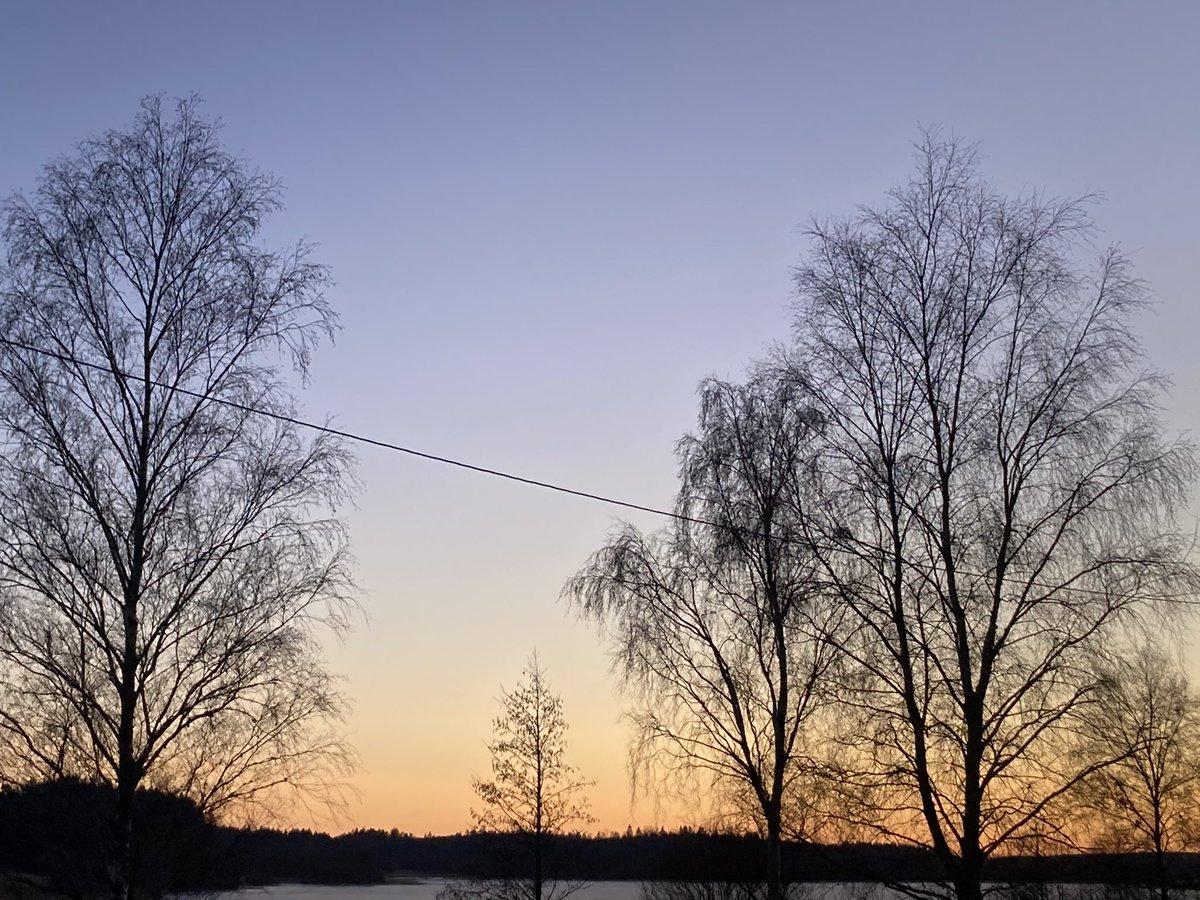 Replying to @DavidSandum: Photos from a calm 2.5k walk this evening in beautiful light.