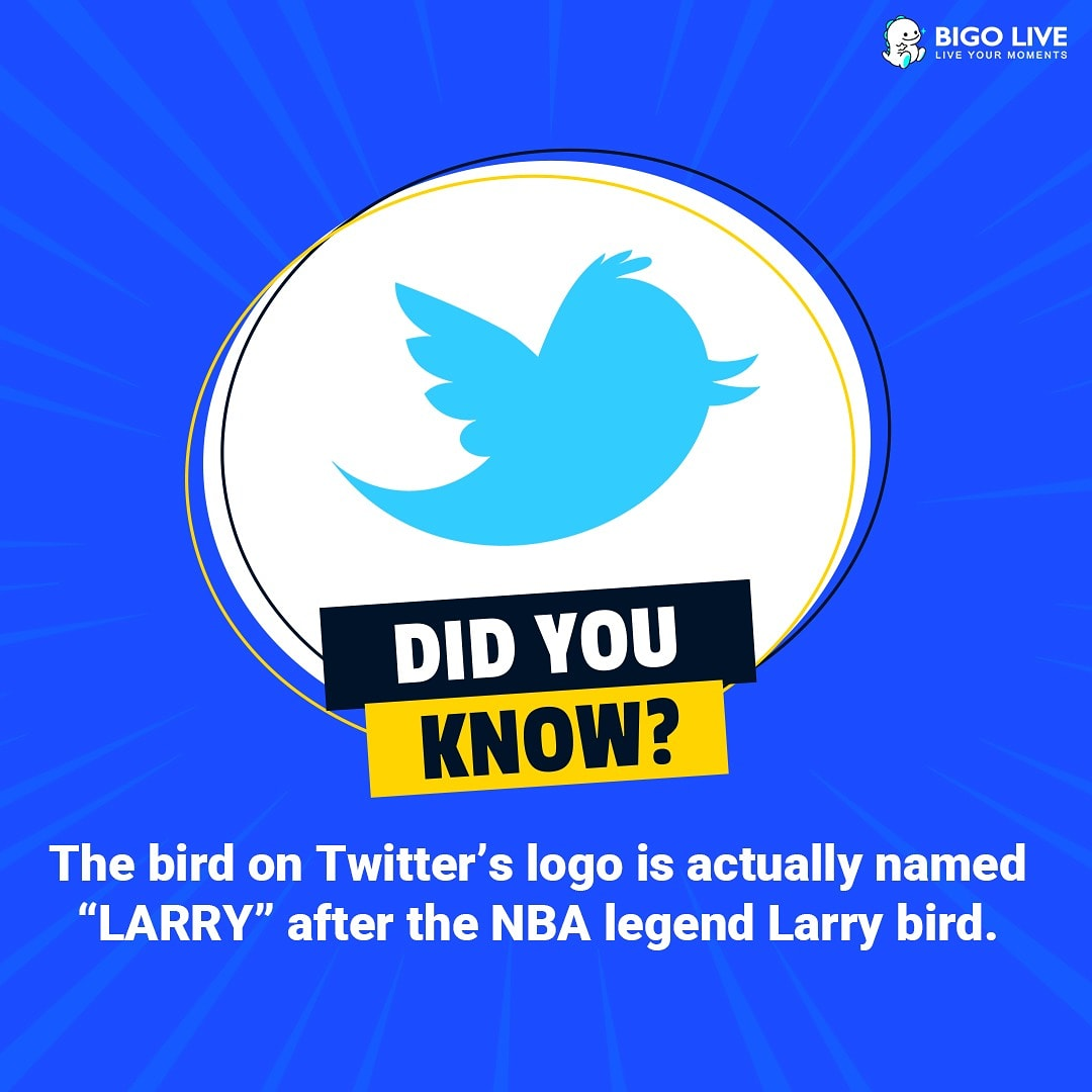 #didyouknow 😃  #BIGOLIVE #LIVESTREAM #streaming #stream #Facts #facts #fact #streamnow #NEPAL #weekendvibes #weekend #weekendplans #doyouknow #internet #web #twitter #instagram #socialmedia #larry