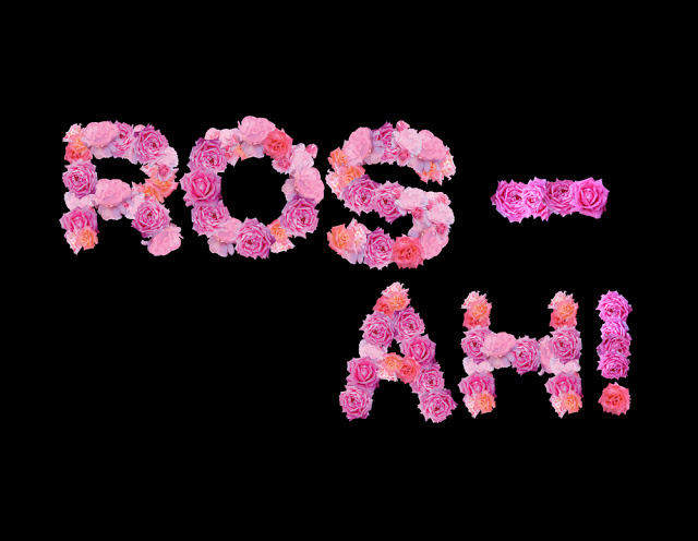 +CYN Fonts: Rosah #Type made of #Pink #Roses #Flowers