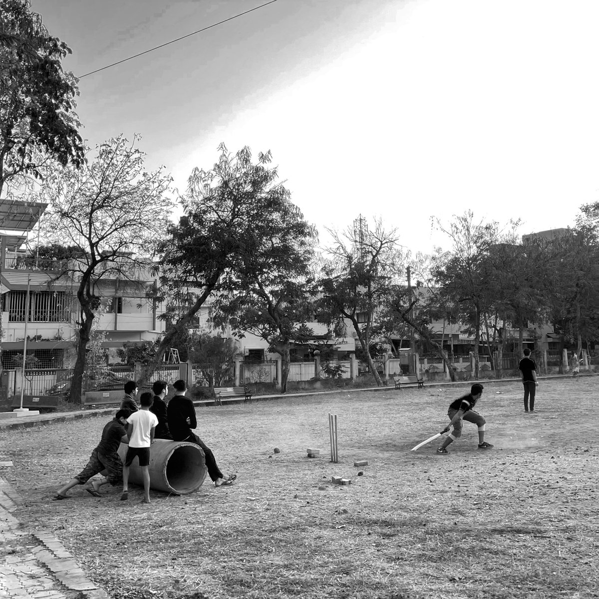 Lazy cricket evenings 🏏