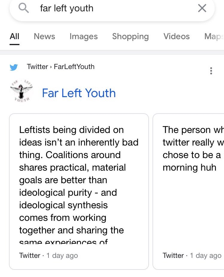 "Big win! Just learned when you search ""Far Left Youth"" on Google, we're finally the first thing to pop up! Big point to FLY's prominence and big win for leftist discourse. For the search ""far left"" to give anything besides propaganda is positive. W's in chat"