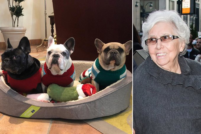 Lady Gagas grandmother thrilled that stolen dogs returned safely Photo