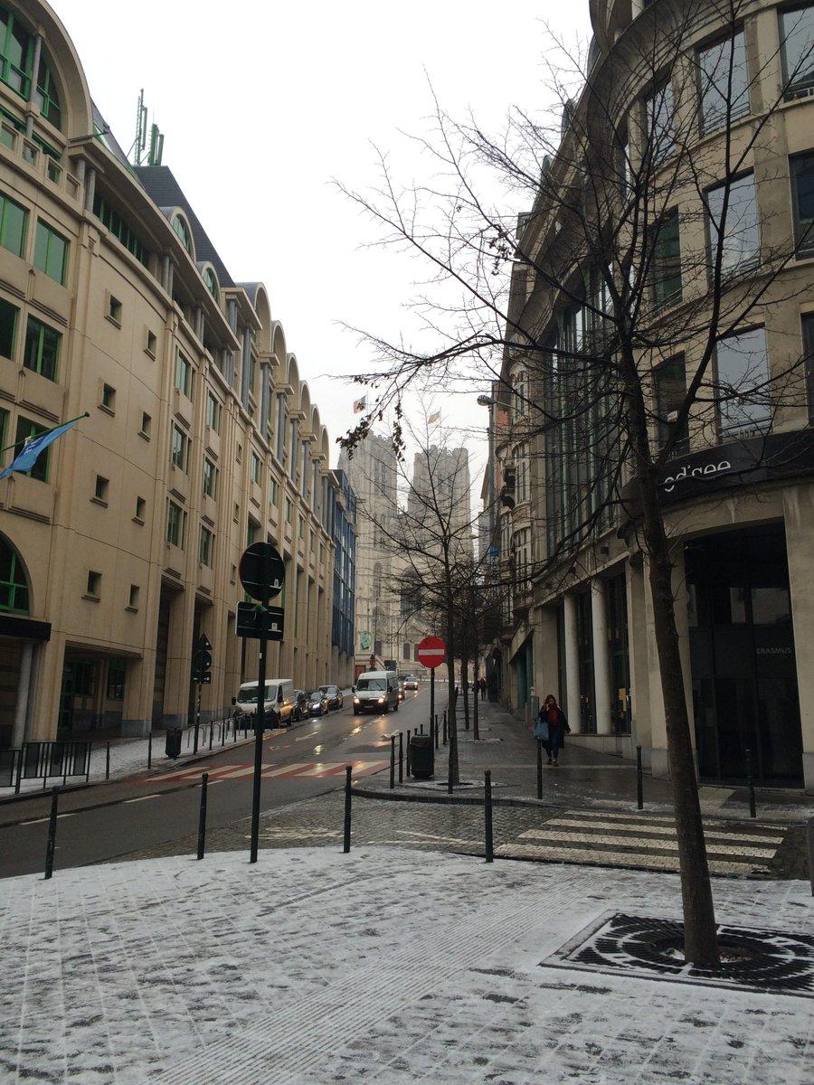 A Little Unsteady in the #Winter Wonderland that is Brussells     #travel #lookatourworld #travelbloging #travelbloggers #Belgium #IFuckedUp
