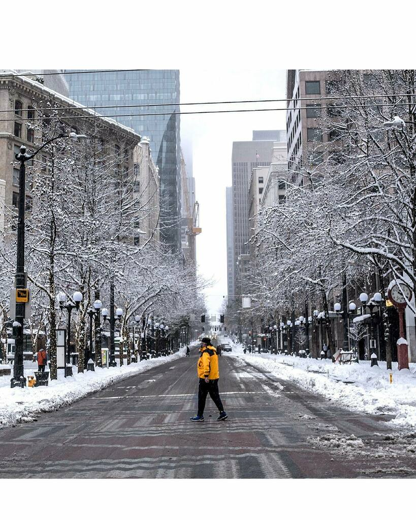 4th Ave and Pine St.  #walking #citylife #seattle #winter #snowday #downtown #pnw #washingtonstate #streetphotography #streetshots_raw #streetgrammer #sonya7iii #sonyalpha #spi_citylife #spi_collective