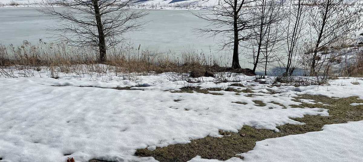 I walk past the same lake almost everyday. I haven't been able to the last few weeks because of all the snow. My path around it was somewhat passable today. #nature