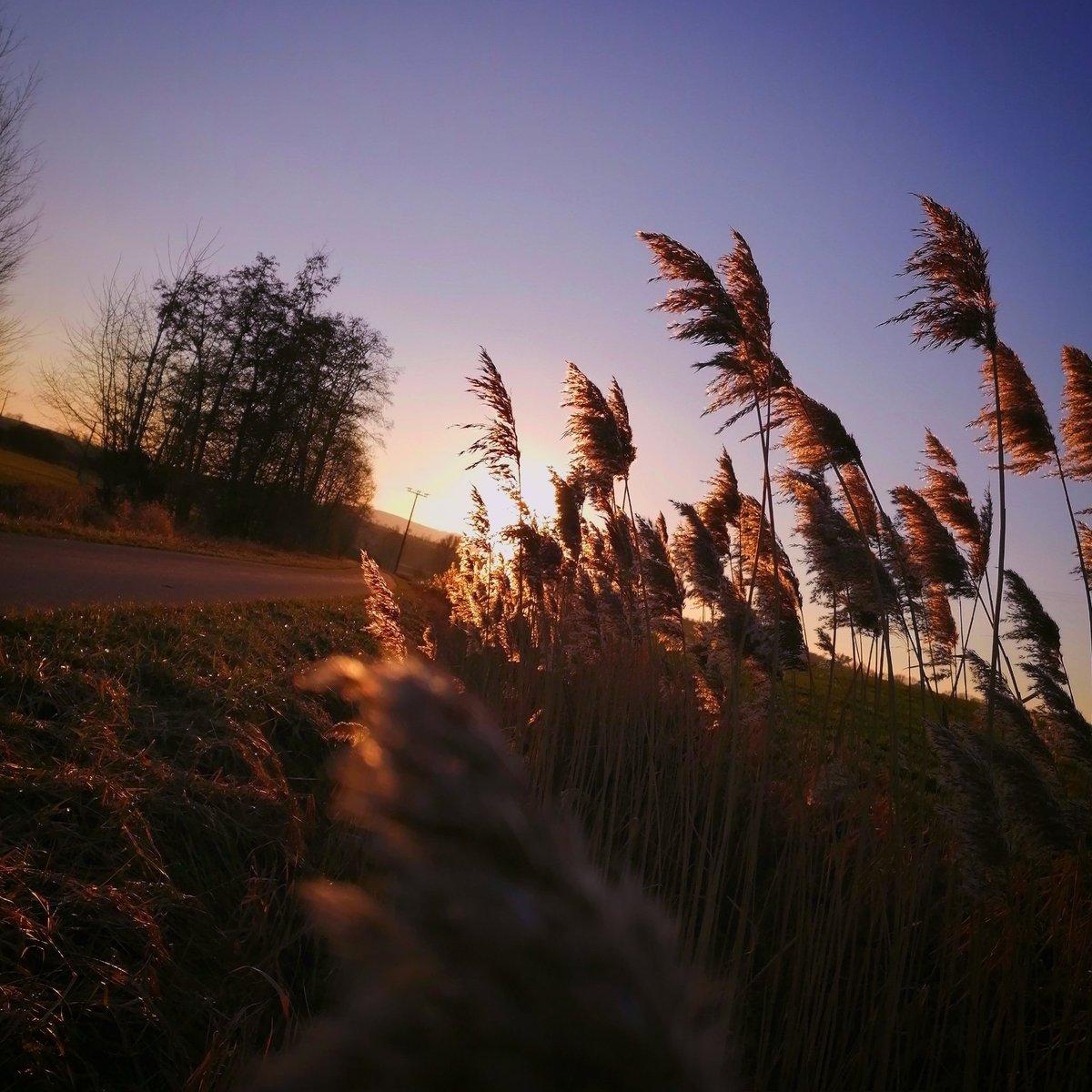 🌇🌄🌞 Sunset 🌞 🌄 🌇 @ мγ ƒανοяιτє ρℓαϲє  #nature #sunset #favoriteplace #photography #Goodnight
