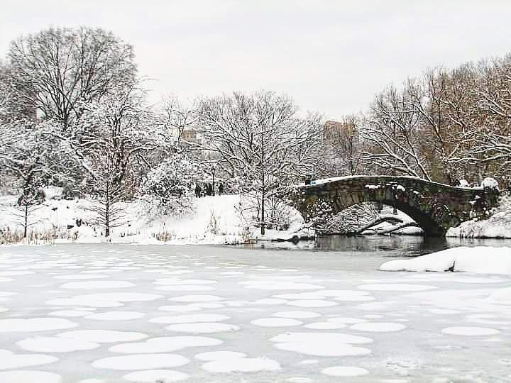 For all the cold a winter may bring, the falling of snow makes up for it.  #KarissasKaptures #ThrowBack #Circa2010 #CentralPark #NewYorkCity #NewYorkCityPhotography #Bridges #Bridge #SnowCoveredBridge #SnowIsBeautiful #SnowIsPretty #Snowflakes #Snow❄ #Nature #NaturePhotography