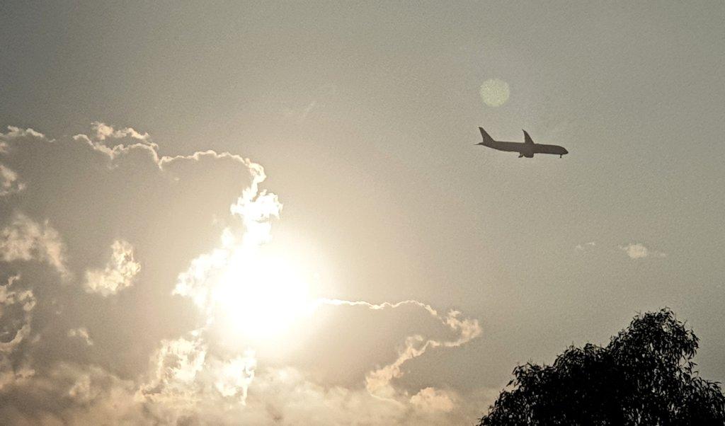 Early morning flight 🛬  #Sunday #Risingsun  #Sydneyskies ☀️