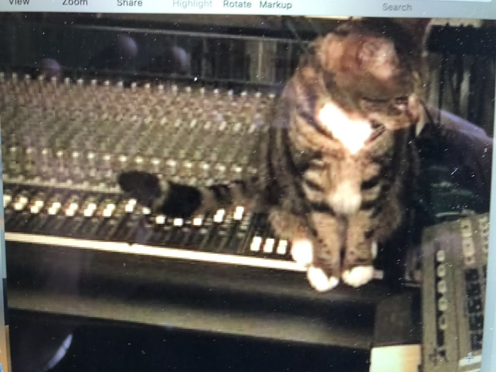 @JaneAustenDance @56blackcat Cat mixing faders with his tail in the house...happy #Caturday everyone!😄
