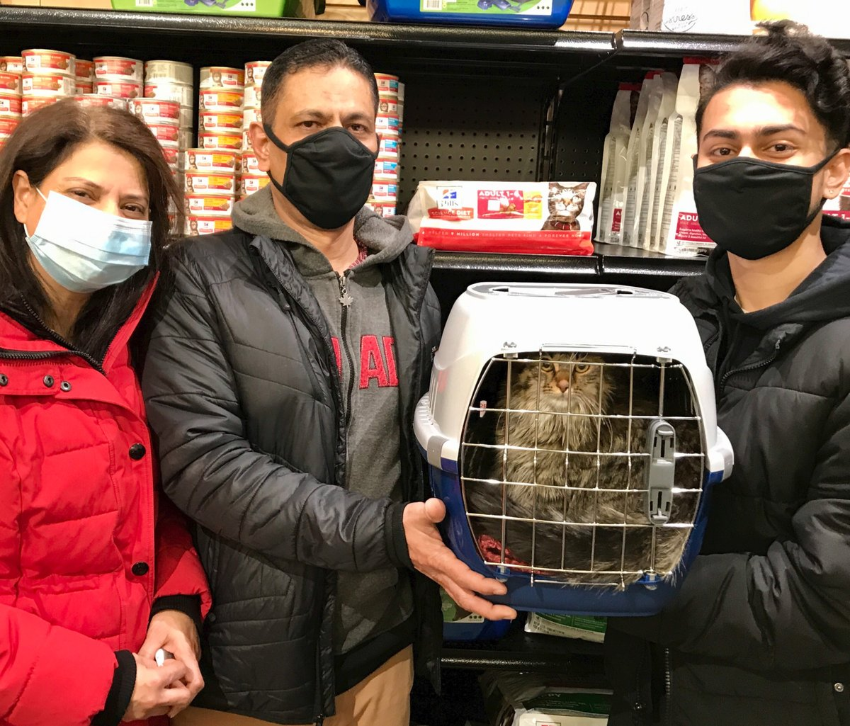 It's another double #caturday! Although pretty girl Camilla is front and center, there is also an Astrid in the carrier and together they head to their new forever home with the Yar Khan family! #WHSHeroes #caturday #soulmatesaturday Hill's Pet Nutrition