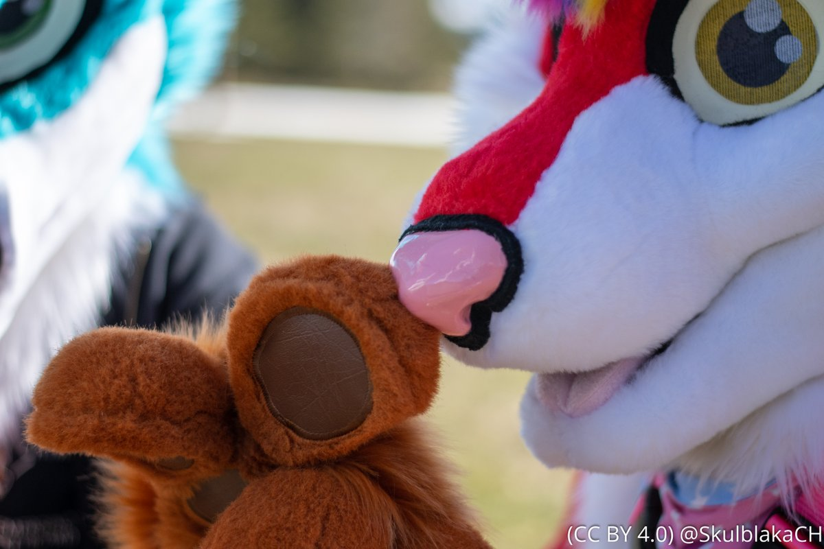 So, I'm a bit late for #FursuitFriday ... So have a very close boop !  📸made by @SkulblakaCH today with my lovely @mtristepin :3