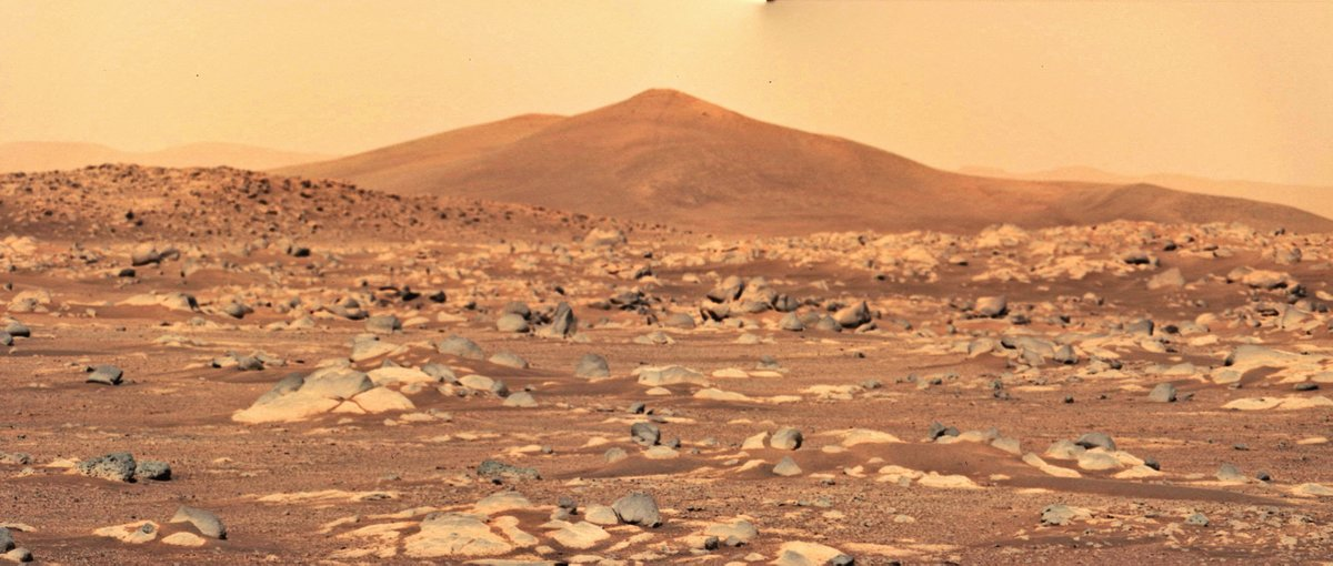 Here are some more panoramas. Each of these uses 2 images 📸 @NASAPersevere  #CountdownToMars