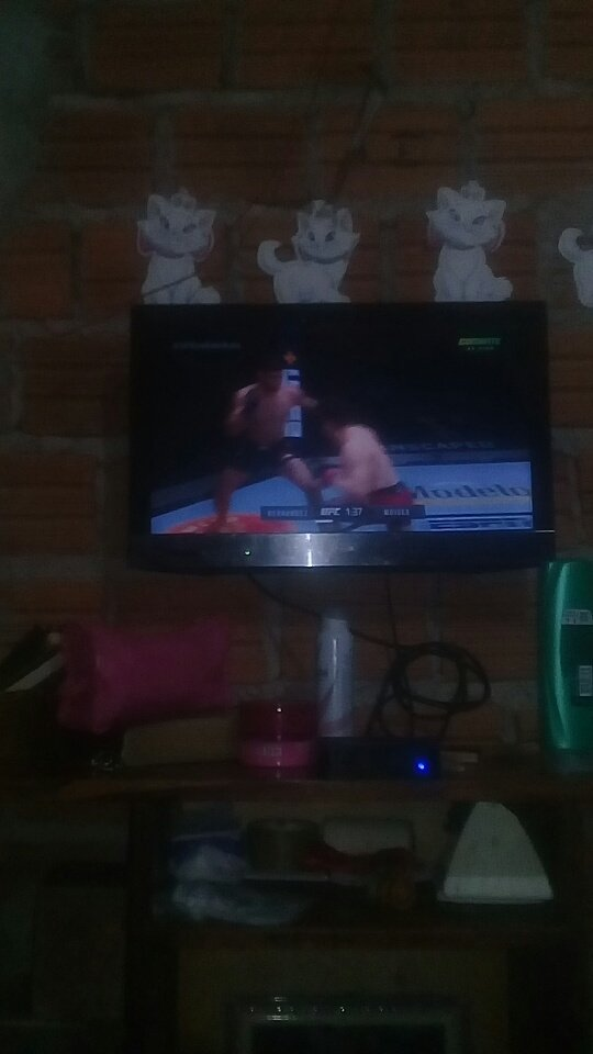 #ufcnocombate boa noite galera do vombate https://t.co/eaKtgFsAWD