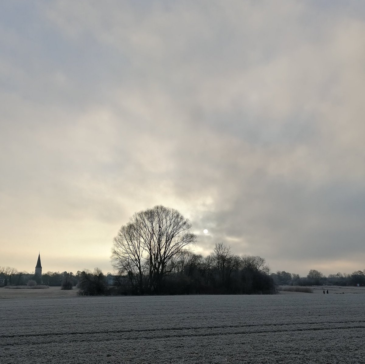 Morning in Bavaria [cold again] #NaturePhotography #nature #photography #photooftheday