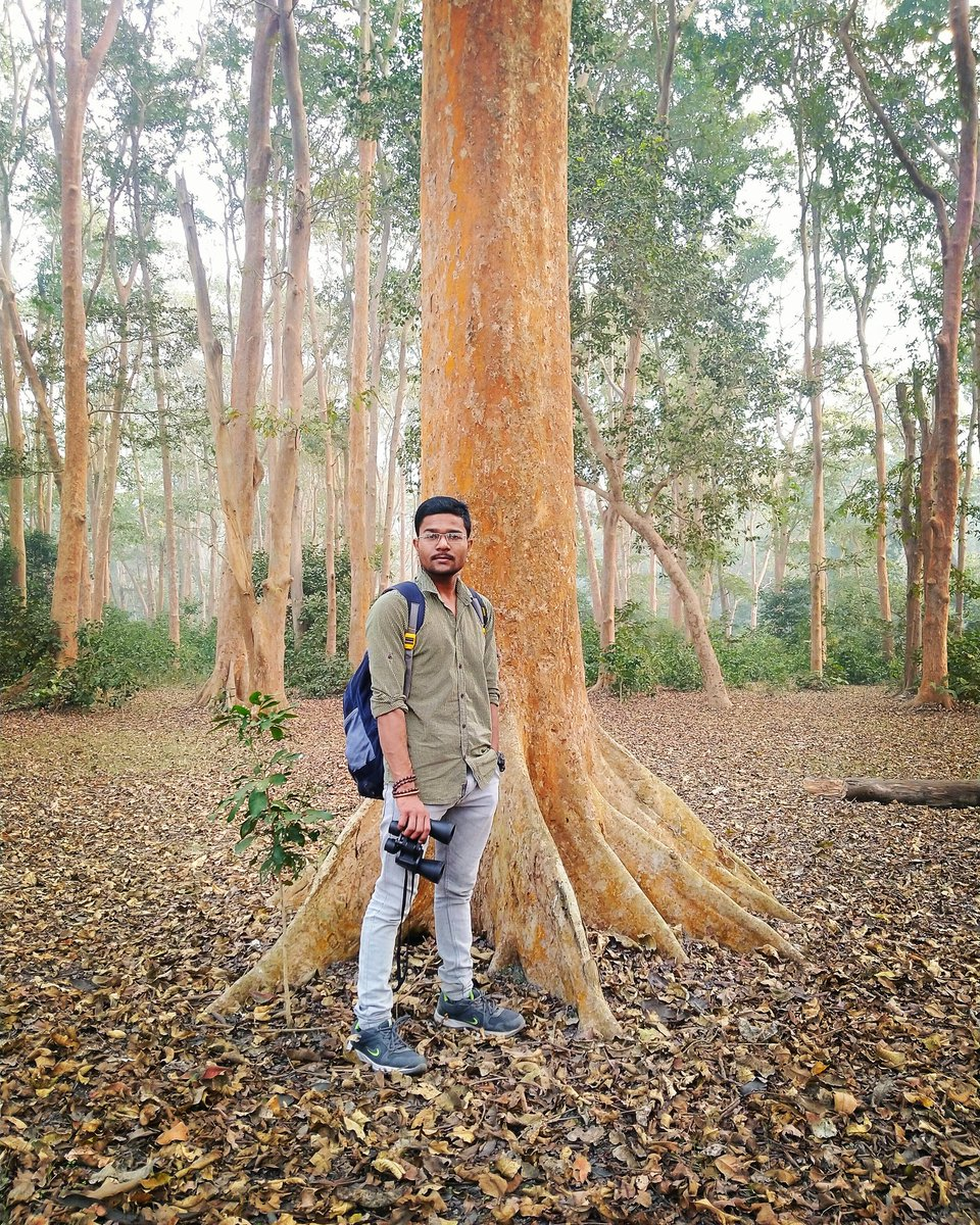 जो अपने ख्वाबों को ऊंचा दर्जा देते हैं, उनका नाम इतिहास में दर्ज होता है। . . #jungle #Tiger #Safari #dudhwanationalpark #dudhwa #dudhwatigerreserve #JUNGLEBOOK #birdwatching #LION #worldprotector #Mission_of_world_protection #zoologist #nature #wildlife #adventure #Tree #wild