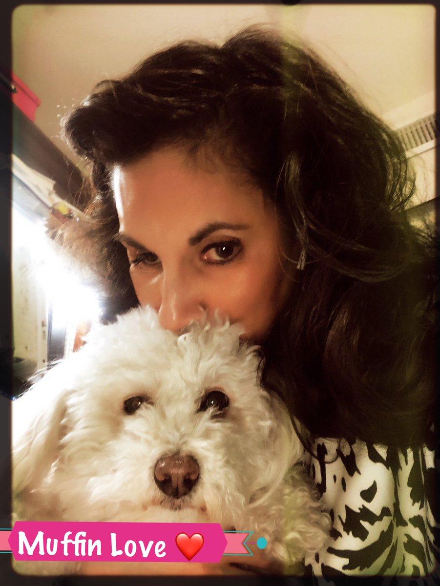 The Muffin...Muffin Love ! #diva #maltipoolovers #maltipoo #puppiesofinstagram  #dogofinstagram #muffin  #puppylove  #dog #puppy  #maltipoosofinstagram #adoptdontshop #doglife  #instagood  #instagramdogs  #10xdog #10X #🐶🐶 #🐶